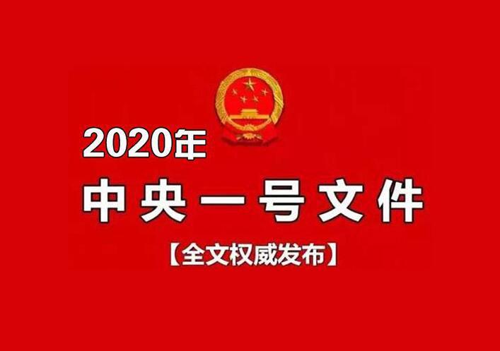 2020年中央一号文件