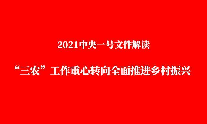 """2021中央一号文件解读:""""三农""""工作重心转向全面推进乡村振兴"""